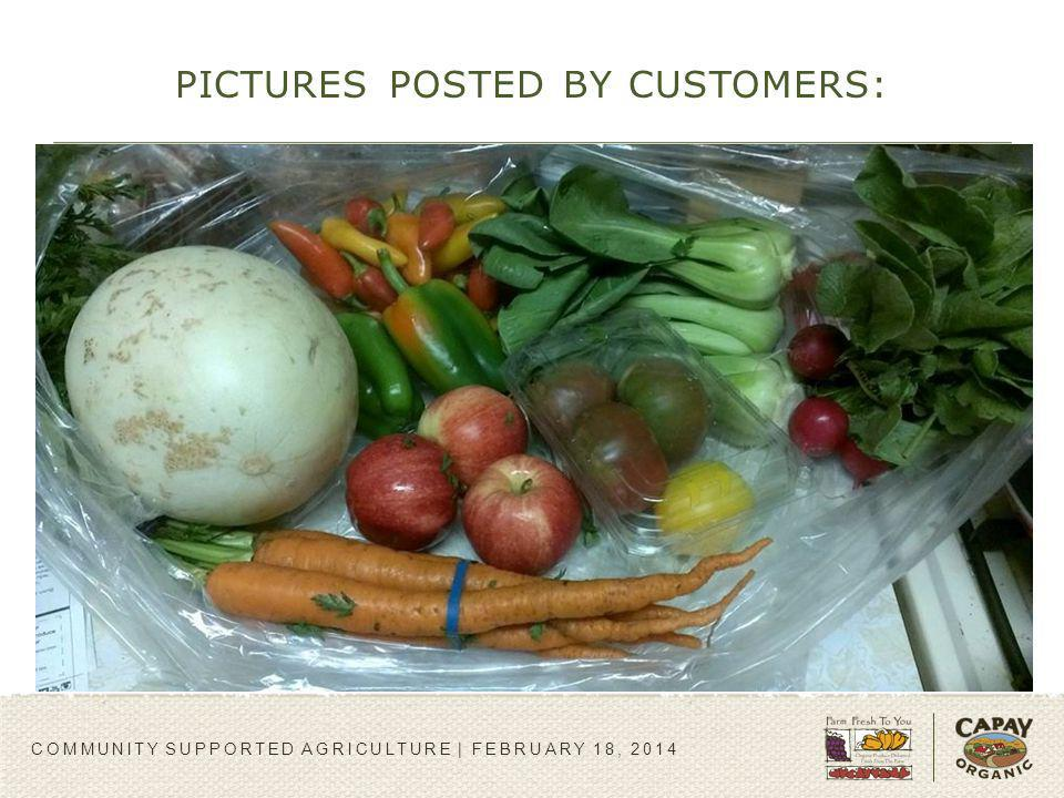 PICTURES POSTED BY CUSTOMERS: COMMUNITY SUPPORTED AGRICULTURE | FEBRUARY 18, 2014