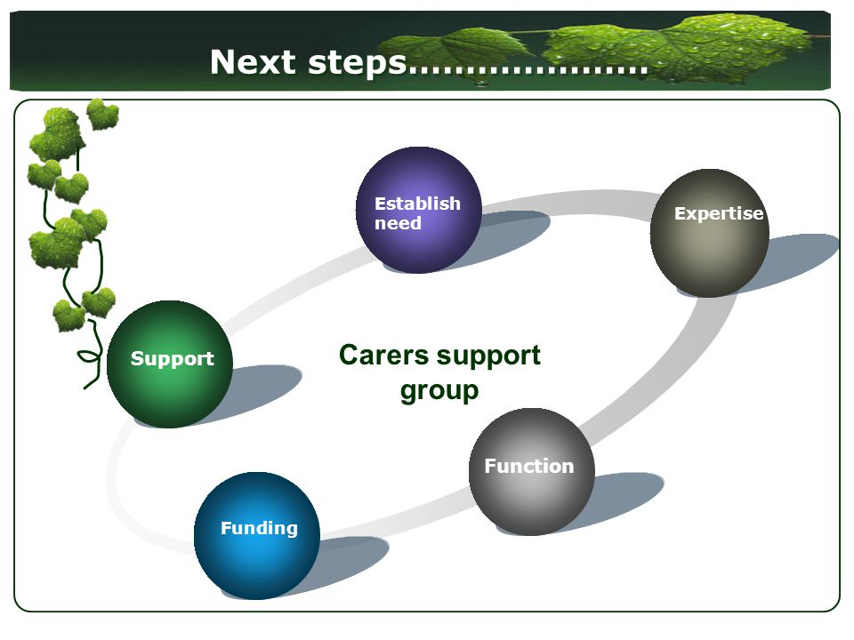 Next steps………………… Support Establish need Expertise Function Funding Carers support group