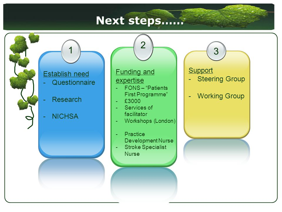 Next steps…… 1 Establish need -Questionnaire -Research -NICHSA 2 Funding and expertise -FONS – Patients First Programme -£3000 -Services of facilitator -Workshops (London) -Practice Development Nurse -Stroke Specialist Nurse 3 Support -Steering Group -Working Group