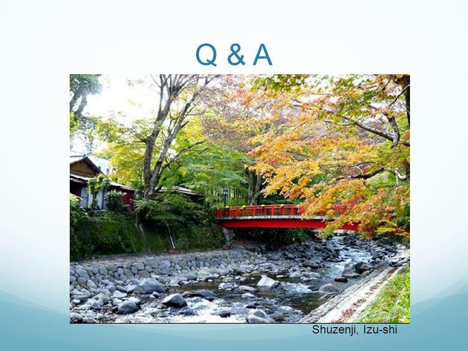 Q & A Shuzenji, Izu-shi