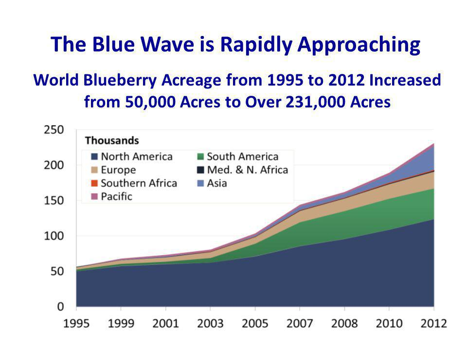 World Blueberry Acreage from 1995 to 2012 Increased from 50,000 Acres to Over 231,000 Acres The Blue Wave is Rapidly Approaching