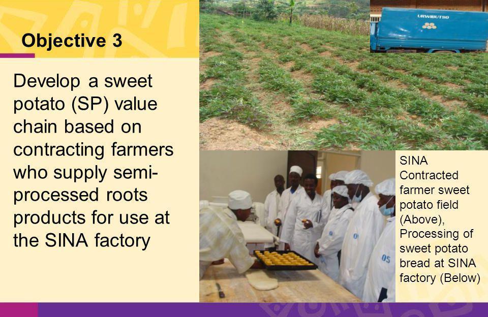 Methodology 1: Technology development /dissemination (white and orange fleshed sweet potato products) Team having sensory test of productsMaking of sweet potato puree