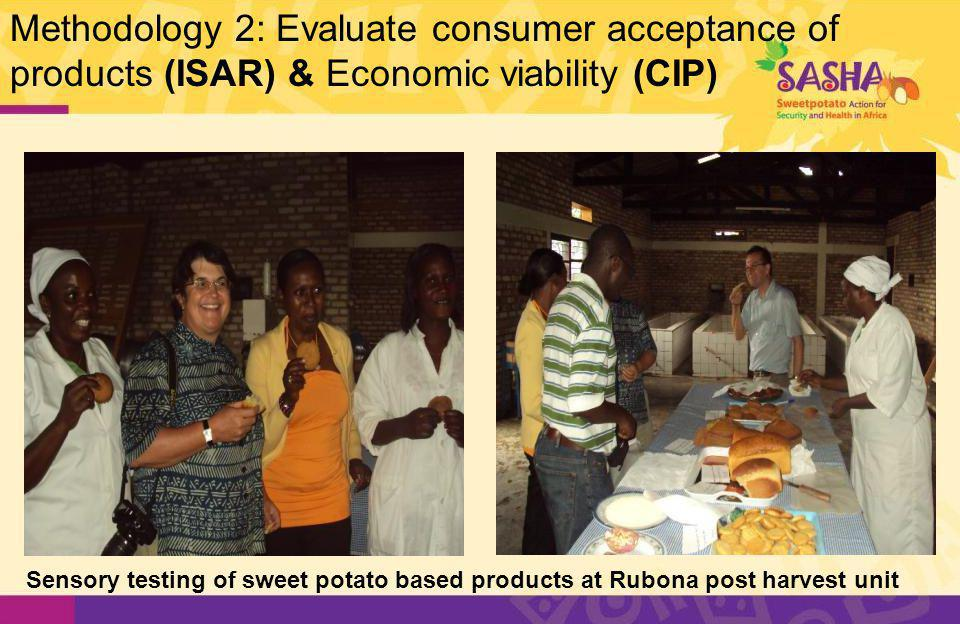 Collaborators and their main roles 1.ISAR (Institut des Sciences Agronomiques du Rwanda) Support seed multiplication, dissemination and production technology dissemination Processing technology development and dissemination 2.