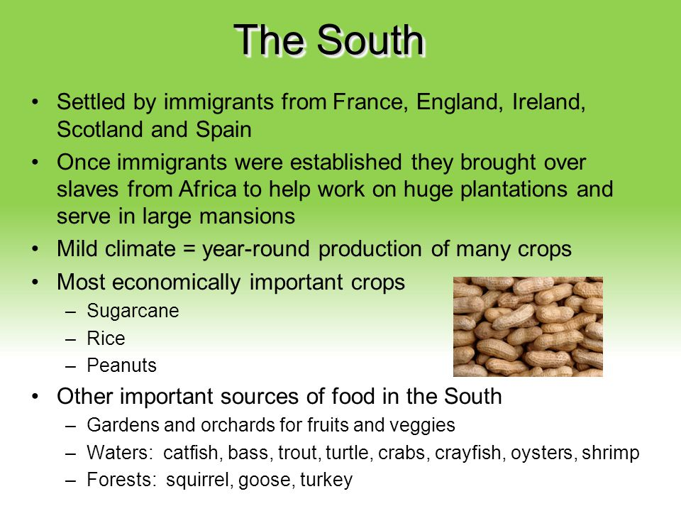 Your Description Goes Here The South Settled by immigrants from France, England, Ireland, Scotland and Spain Once immigrants were established they bro