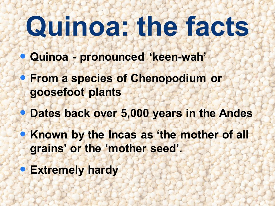 Quinoa: the facts Quinoa - pronounced keen-wah From a species of Chenopodium or goosefoot plants Dates back over 5,000 years in the Andes Known by the Incas as the mother of all grains or the mother seed.