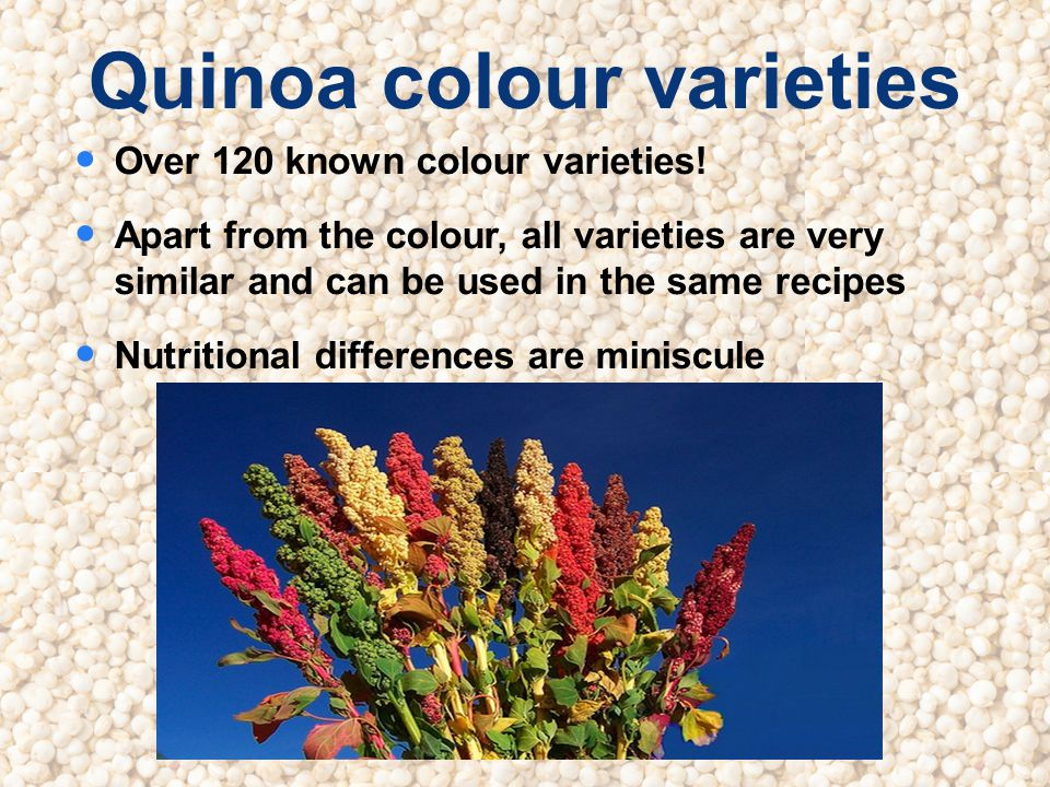 Quinoa colour varieties Over 120 known colour varieties! Apart from the colour, all varieties are very similar and can be used in the same recipes Nut