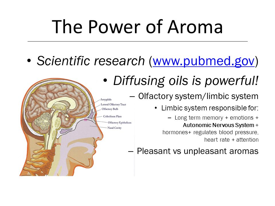 The Power of Aroma Scientific research (www.pubmed.gov)www.pubmed.gov Diffusing oils is powerful! – Olfactory system/limbic system Limbic system respo
