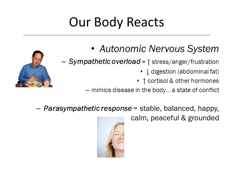 Our Body Reacts Autonomic Nervous System – Sympathetic overload = stress/anger/frustration digestion (abdominal fat) cortisol & other hormones – mimic