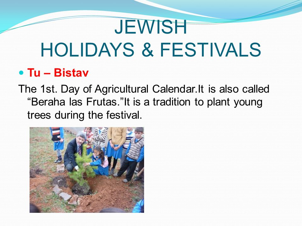 JEWISH HOLIDAYS & FESTIVALS Tu – Bistav The 1st. Day of Agricultural Calendar.It is also called Beraha las Frutas.It is a tradition to plant young tre