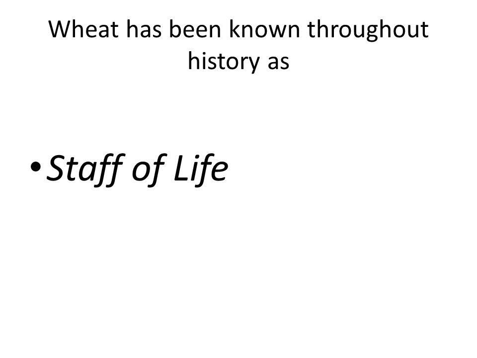 Wheat has been known throughout history as Staff of Life