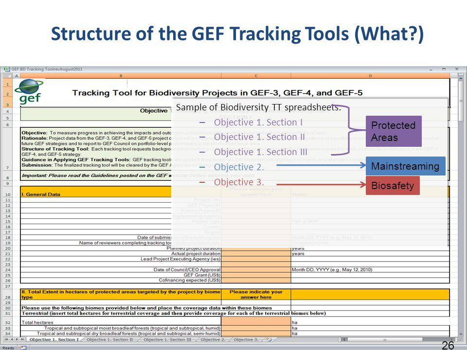 Structure of the GEF Tracking Tools (What ) Sample of Biodiversity TT spreadsheets: – Objective 1.