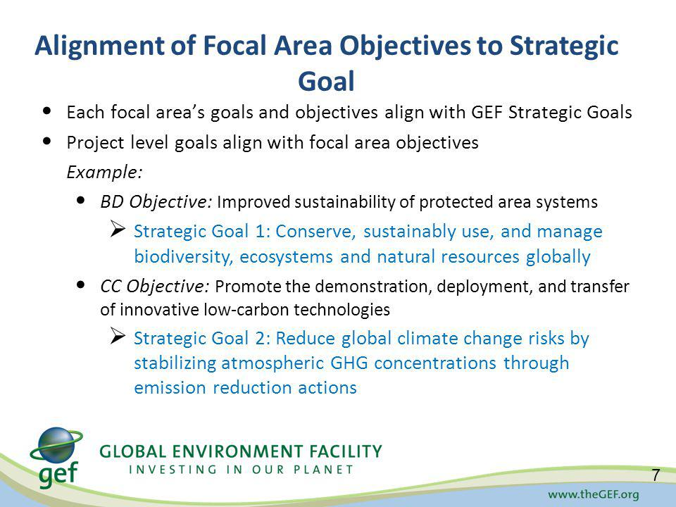 Alignment of Focal Area Objectives to Strategic Goal Each focal areas goals and objectives align with GEF Strategic Goals Project level goals align with focal area objectives Example: BD Objective: Improved sustainability of protected area systems Strategic Goal 1: Conserve, sustainably use, and manage biodiversity, ecosystems and natural resources globally CC Objective: Promote the demonstration, deployment, and transfer of innovative low-carbon technologies Strategic Goal 2: Reduce global climate change risks by stabilizing atmospheric GHG concentrations through emission reduction actions 7