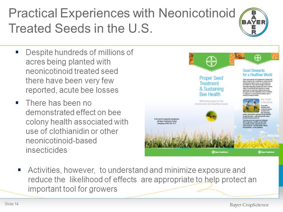 Despite hundreds of millions of acres being planted with neonicotinoid treated seed there have been very few reported, acute bee losses There has been