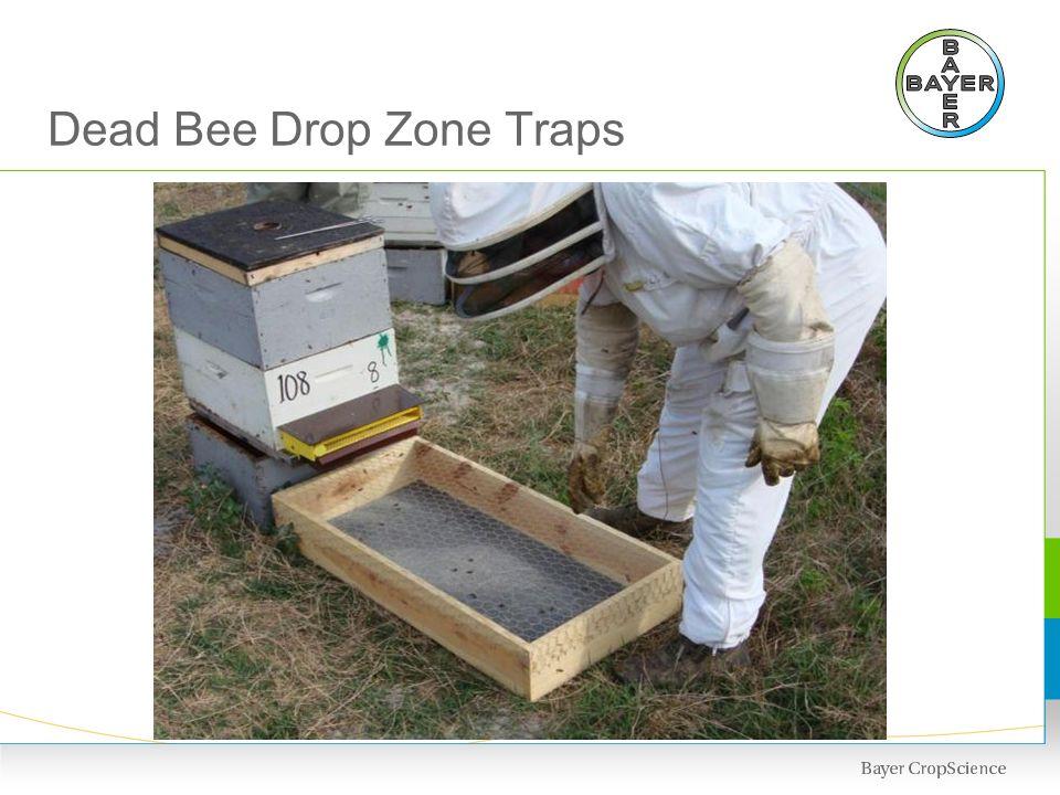 Dead Bee Drop Zone Traps