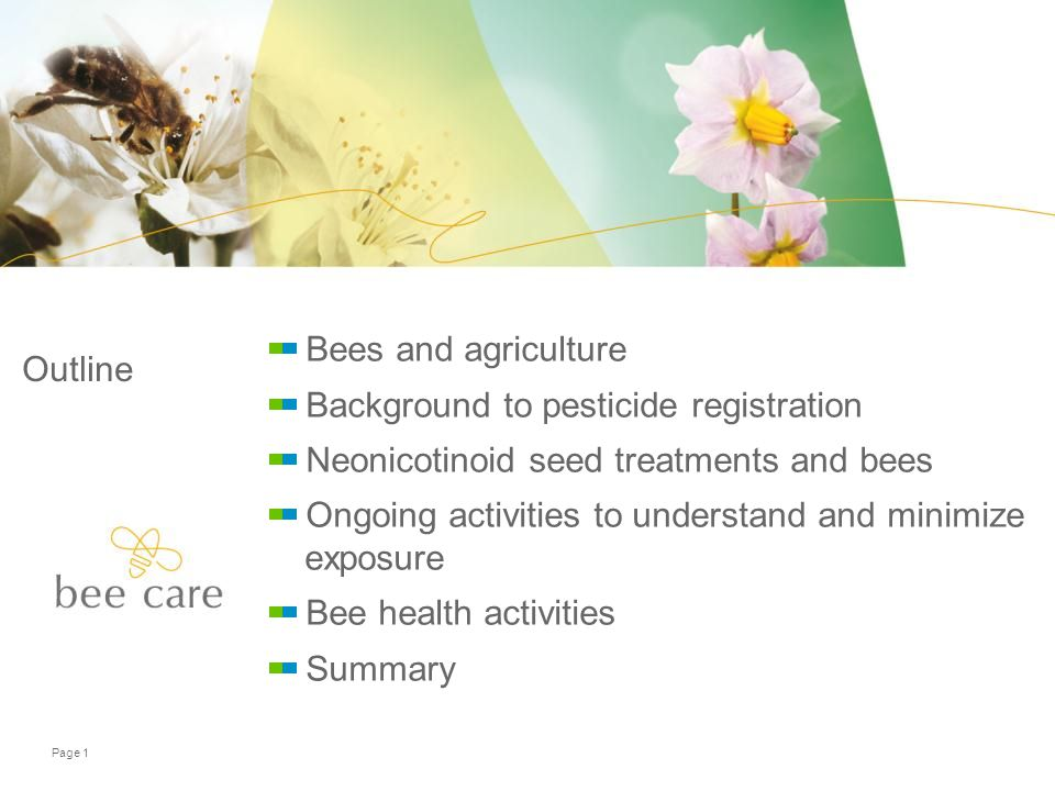 Outline Bees and agriculture Background to pesticide registration Neonicotinoid seed treatments and bees Ongoing activities to understand and minimize