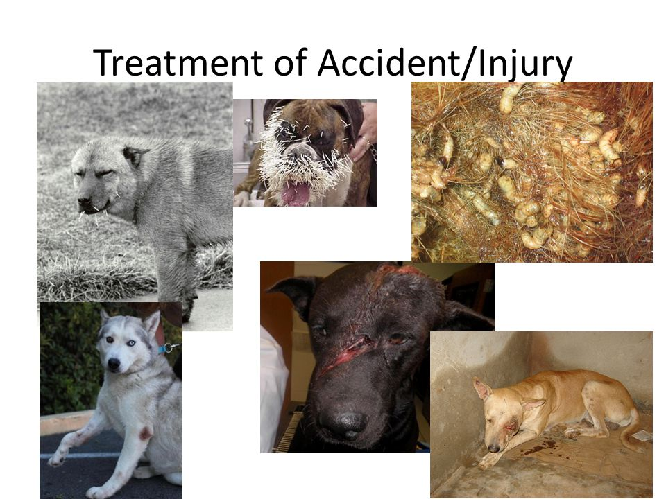Treatment of Accident/Injury
