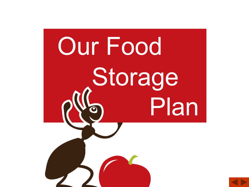 What is a Food Storage Plan?