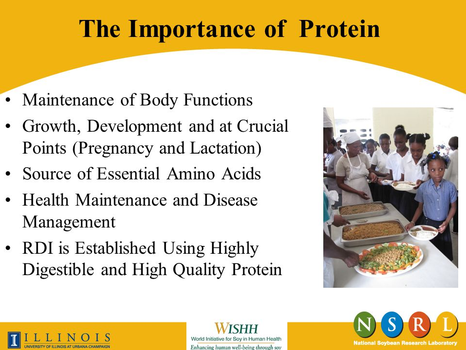 The Importance of Protein Maintenance of Body Functions Growth, Development and at Crucial Points (Pregnancy and Lactation) Source of Essential Amino Acids Health Maintenance and Disease Management RDI is Established Using Highly Digestible and High Quality Protein