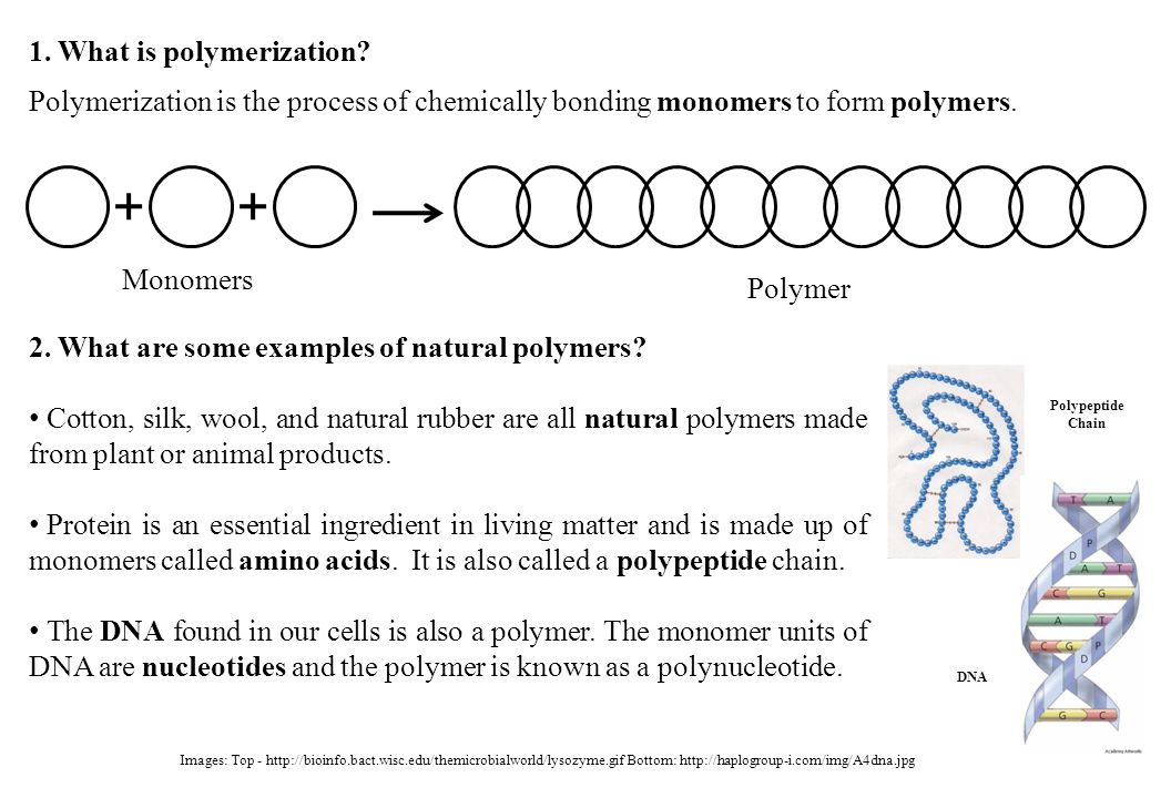 1. What is polymerization? Polymerization is the process of chemically bonding monomers to form polymers. Monomers Polymer 2. What are some examples o