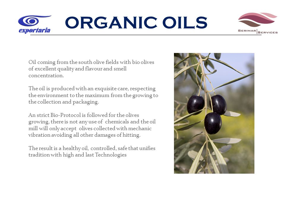 ORGANIC OILS Oil coming from the south olive fields with bio olives of excellent quality and flavour and smell concentration.