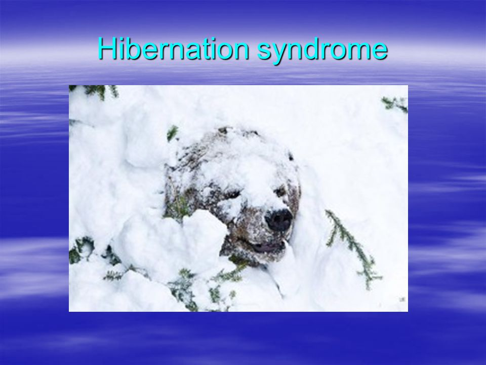 Hibernation syndrome