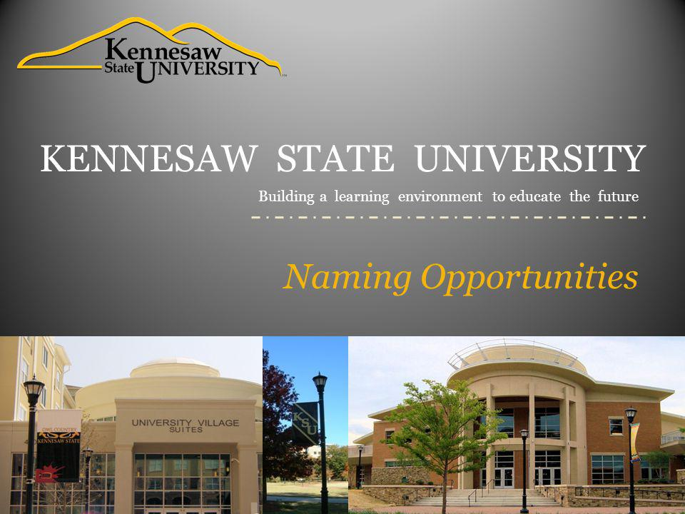 KSU Academic Colleges General Endowments & Scholarships Naming Opportunity Gift Amount Distinguished Chair*$1,000,000 Endowed Chair*$500,000 Distinguished Professorship*$400,000 Endowed Professorship* $200,000 Distinguished Scholar* $100,000 Endowed Scholar* $50,000 Endowed Lecture Series/Annual Conference $40,000 Graduate Fellowships$30,000 Endowed Scholarships$20,000 Annual Scholarships $1,000 *Establishing a Distinguished and/or Endowed position provides funds to its holder in support of his or her teaching, research and service and is supported by payout from an endowment fund, a fund functioning as an endowment fund, or from an annual allocation.