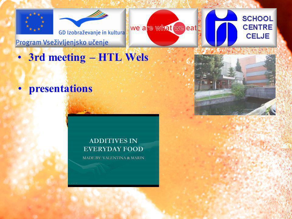 4th meeting – I.P.S.I.A. Emilio Cavazza presentations