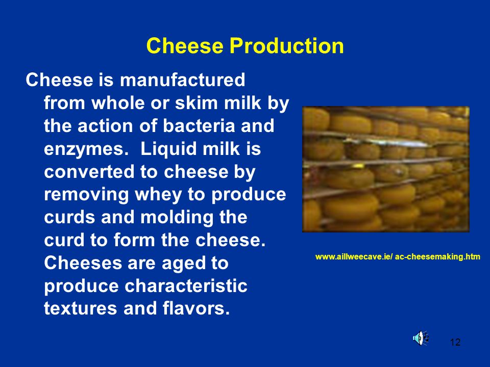 12 Cheese Production Cheese is manufactured from whole or skim milk by the action of bacteria and enzymes. Liquid milk is converted to cheese by remov