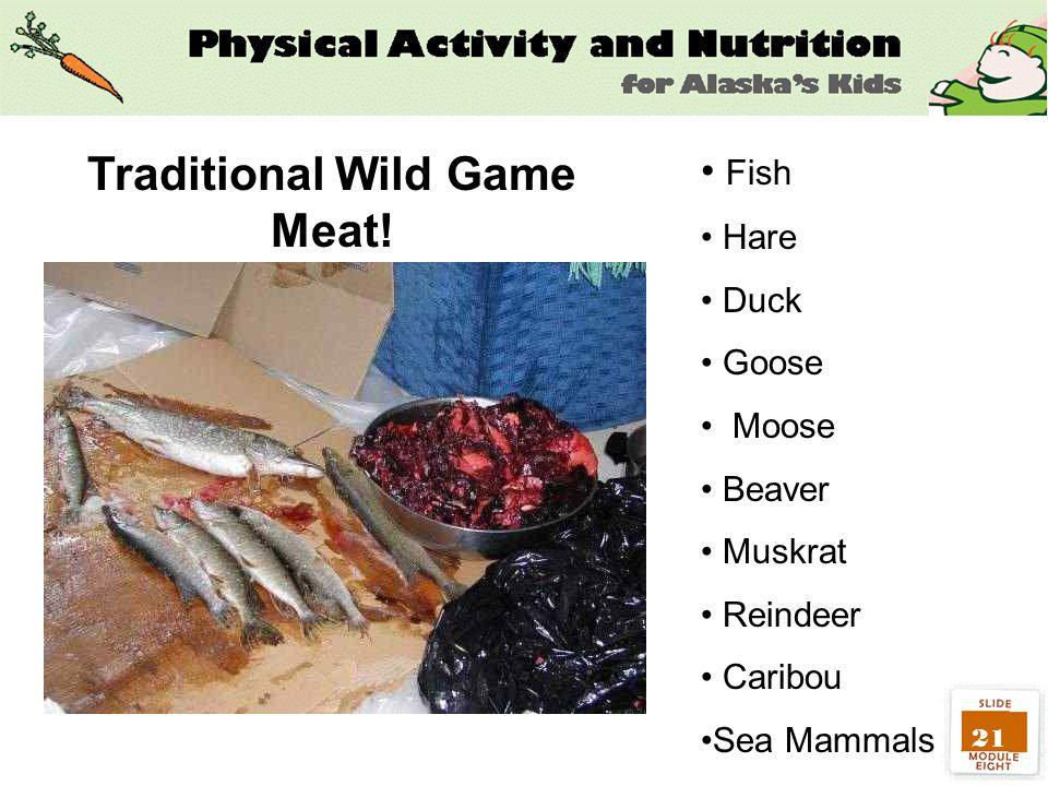 21 Fish Hare Duck Goose Moose Beaver Muskrat Reindeer Caribou Sea Mammals Traditional Wild Game Meat!