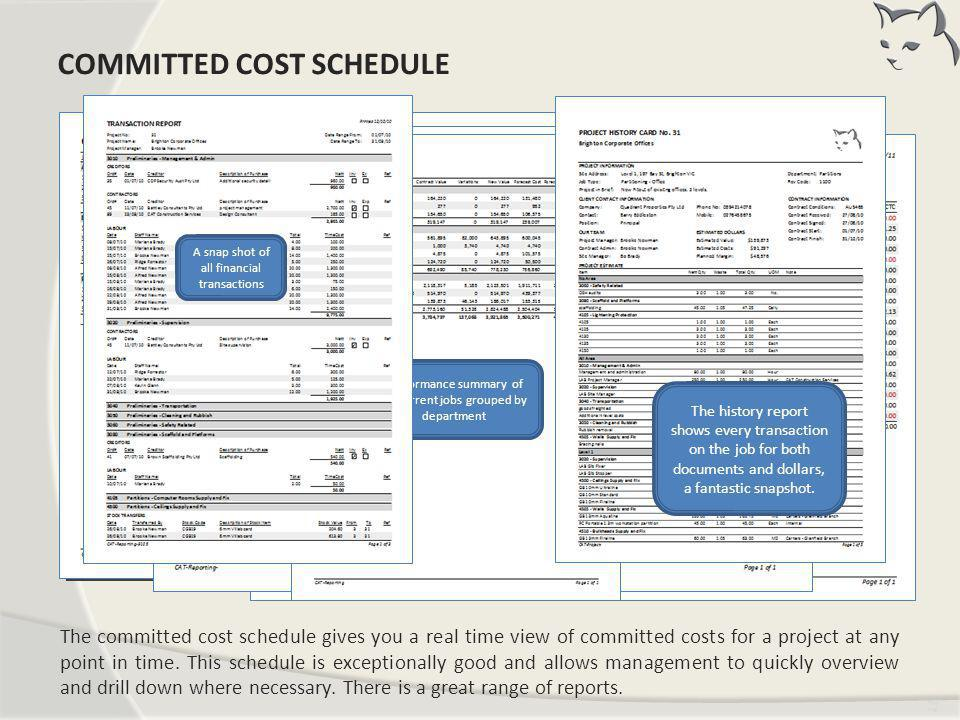 Tim ing The committed cost schedule gives you a real time view of committed costs for a project at any point in time. This schedule is exceptionally g