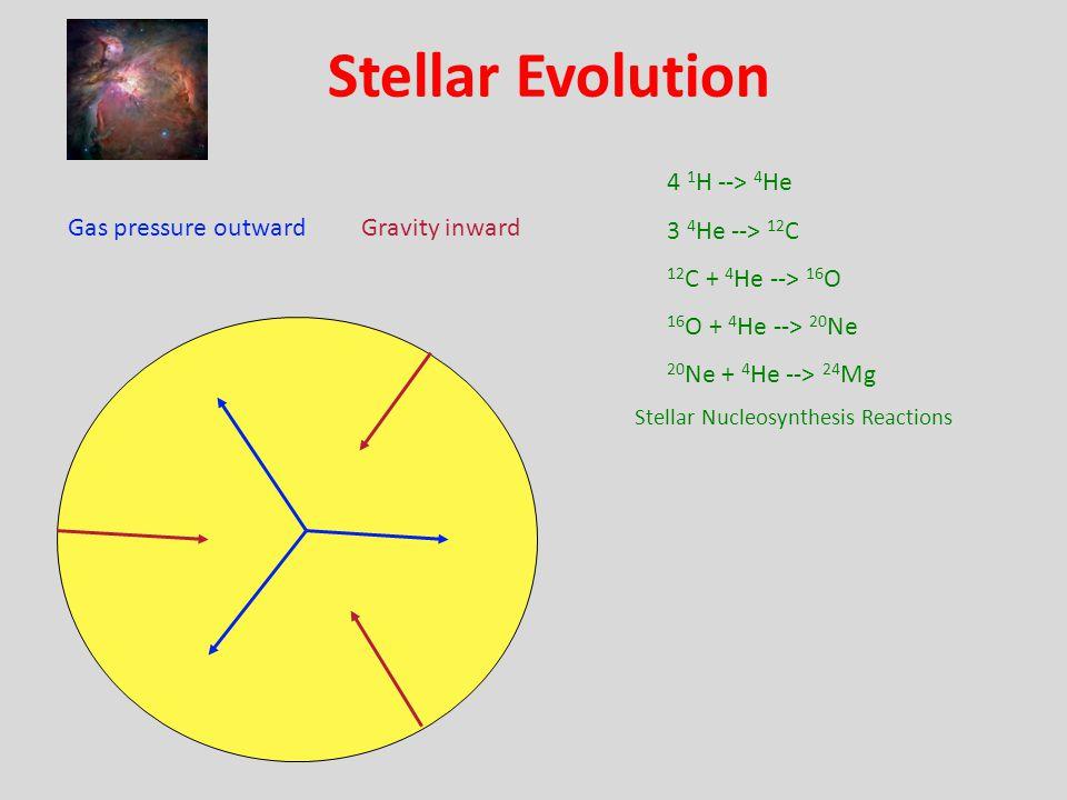 Stellar Evolution Gas pressure outwardGravity inward 4 1 H --> 4 He 3 4 He --> 12 C 12 C + 4 He --> 16 O 16 O + 4 He --> 20 Ne 20 Ne + 4 He --> 24 Mg Stellar Nucleosynthesis Reactions