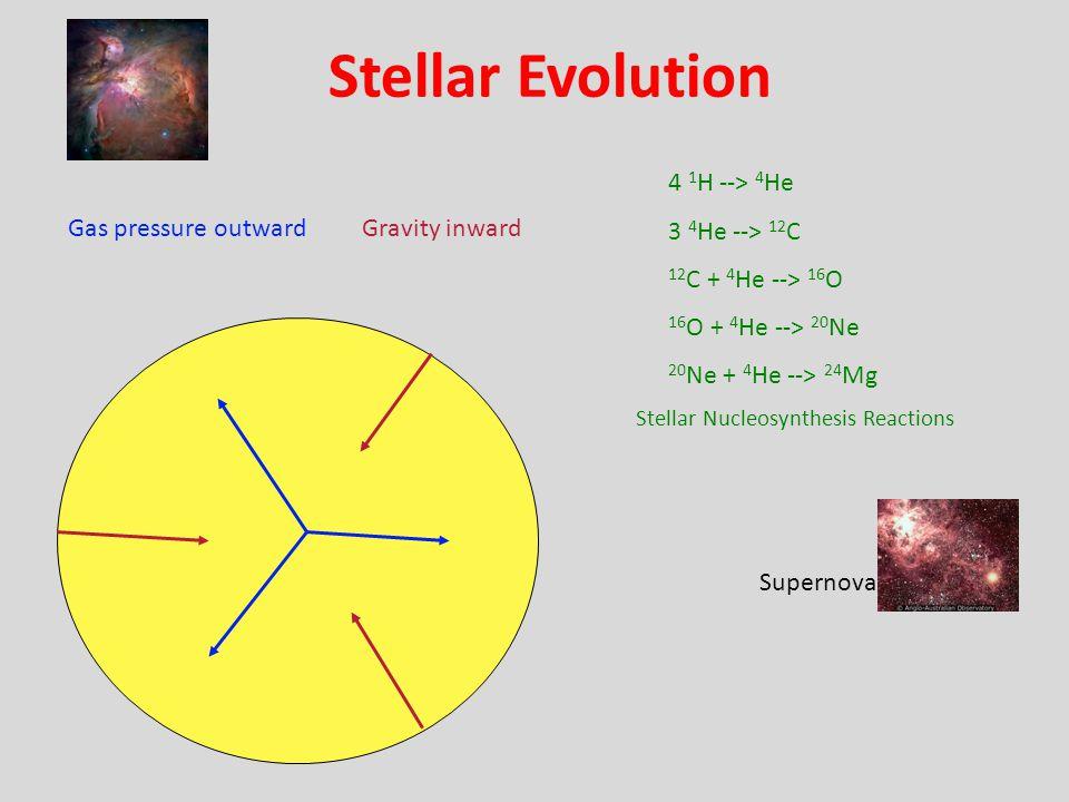 Stellar Evolution Gas pressure outwardGravity inward 4 1 H --> 4 He 3 4 He --> 12 C 12 C + 4 He --> 16 O 16 O + 4 He --> 20 Ne 20 Ne + 4 He --> 24 Mg Stellar Nucleosynthesis Reactions Supernova