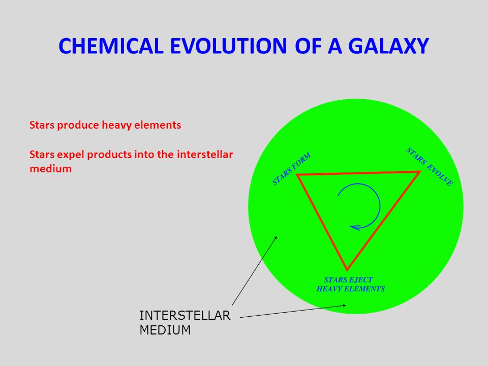 CHEMICAL EVOLUTION OF A GALAXY Stars produce heavy elements Stars expel products into the interstellar medium INTERSTELLAR MEDIUM