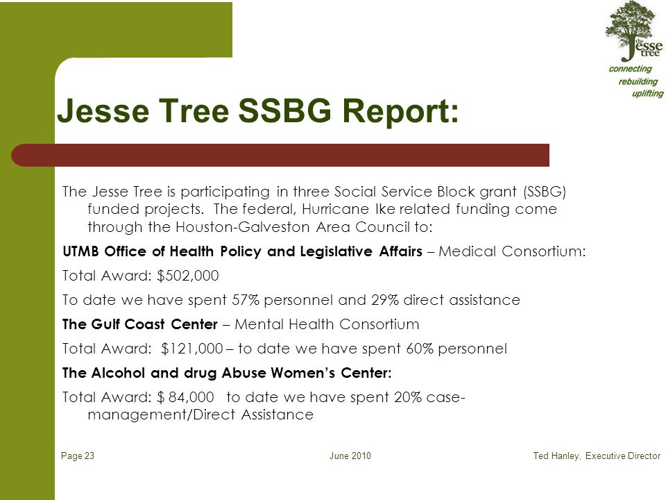 June 2010 Jesse Tree SSBG Report: The Jesse Tree is participating in three Social Service Block grant (SSBG) funded projects.