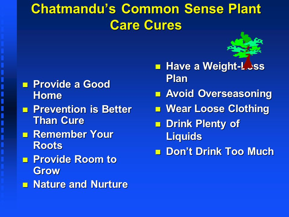Chatmandus Common Sense Plant Care Cures n Provide a Good Home n Prevention is Better Than Cure n Remember Your Roots n Provide Room to Grow n Nature