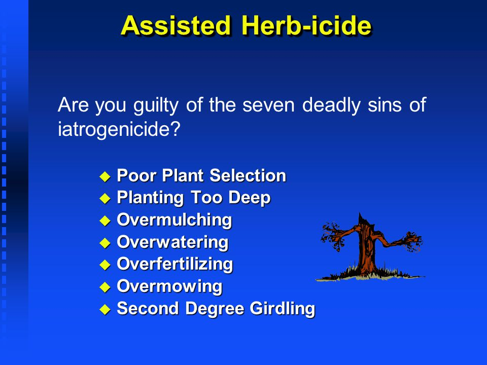 Assisted Herb-icide Poor Plant Selection Poor Plant Selection Planting Too Deep Planting Too Deep Overmulching Overmulching Overwatering Overwatering
