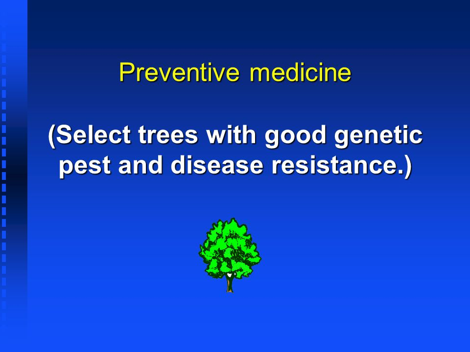 Preventive medicine (Select trees with good genetic pest and disease resistance.)