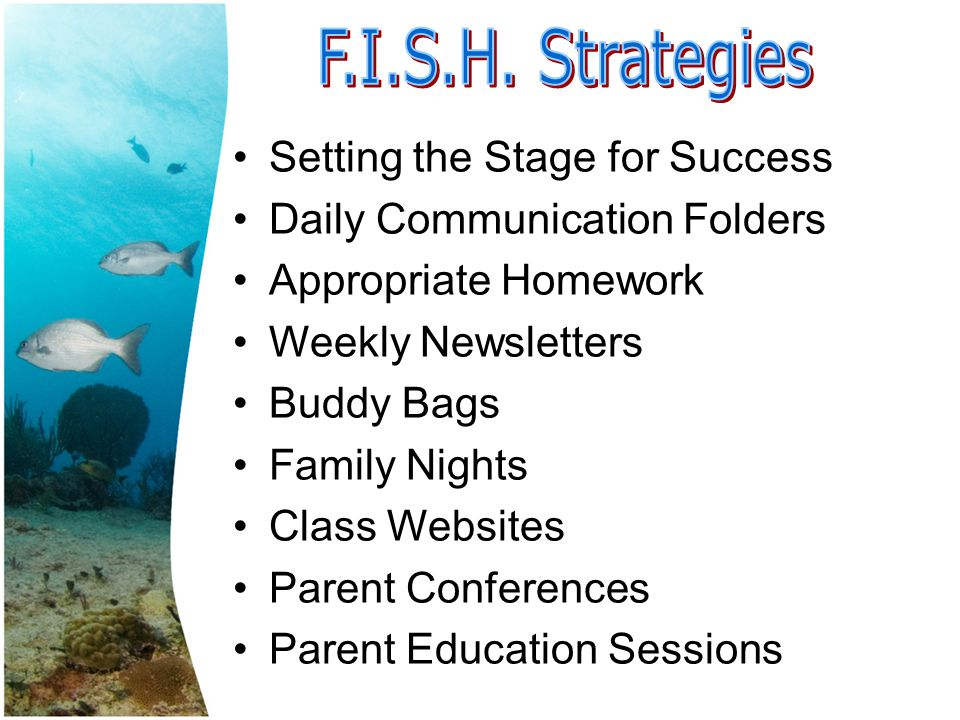 Setting the Stage for Success Daily Communication Folders Appropriate Homework Weekly Newsletters Buddy Bags Family Nights Class Websites Parent Conferences Parent Education Sessions