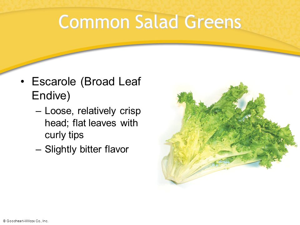 © Goodheart-Willcox Co., Inc. Common Salad Greens Escarole (Broad Leaf Endive) –Loose, relatively crisp head; flat leaves with curly tips –Slightly bi
