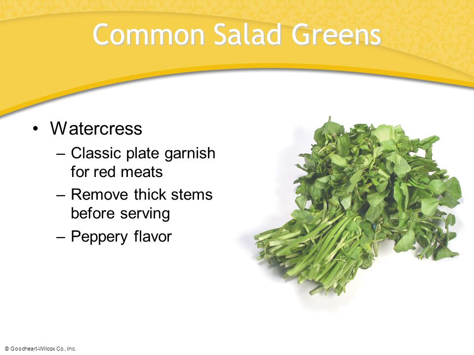 © Goodheart-Willcox Co., Inc. Common Salad Greens Watercress –Classic plate garnish for red meats –Remove thick stems before serving –Peppery flavor