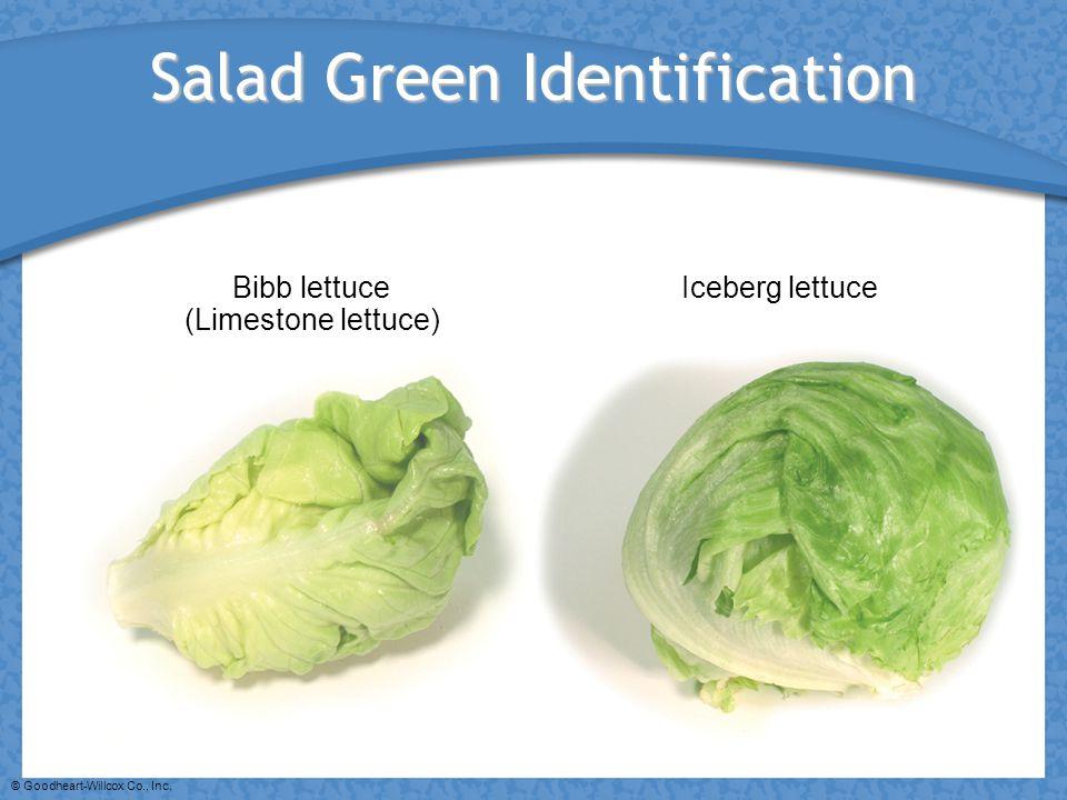 © Goodheart-Willcox Co., Inc. Salad Green Identification Bibb lettuce (Limestone lettuce) Iceberg lettuce