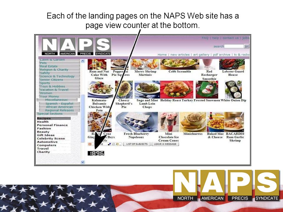 Each of the landing pages on the NAPS Web site has a page view counter at the bottom.
