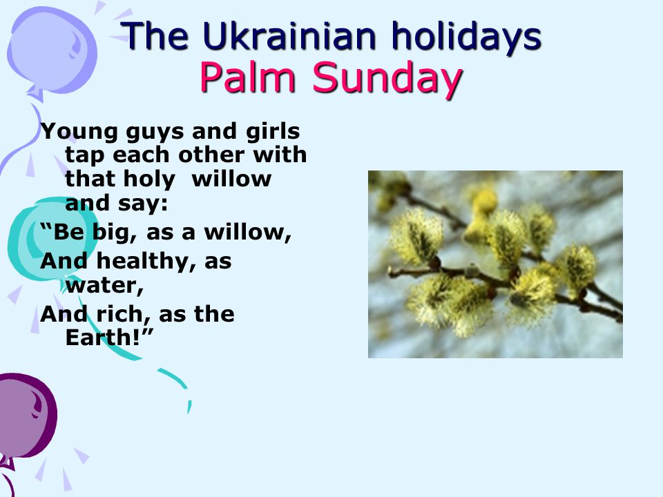 The Ukrainian holidays Palm Sunday Young guys and girls tap each other with that holy willow and say: Be big, as a willow, And healthy, as water, And