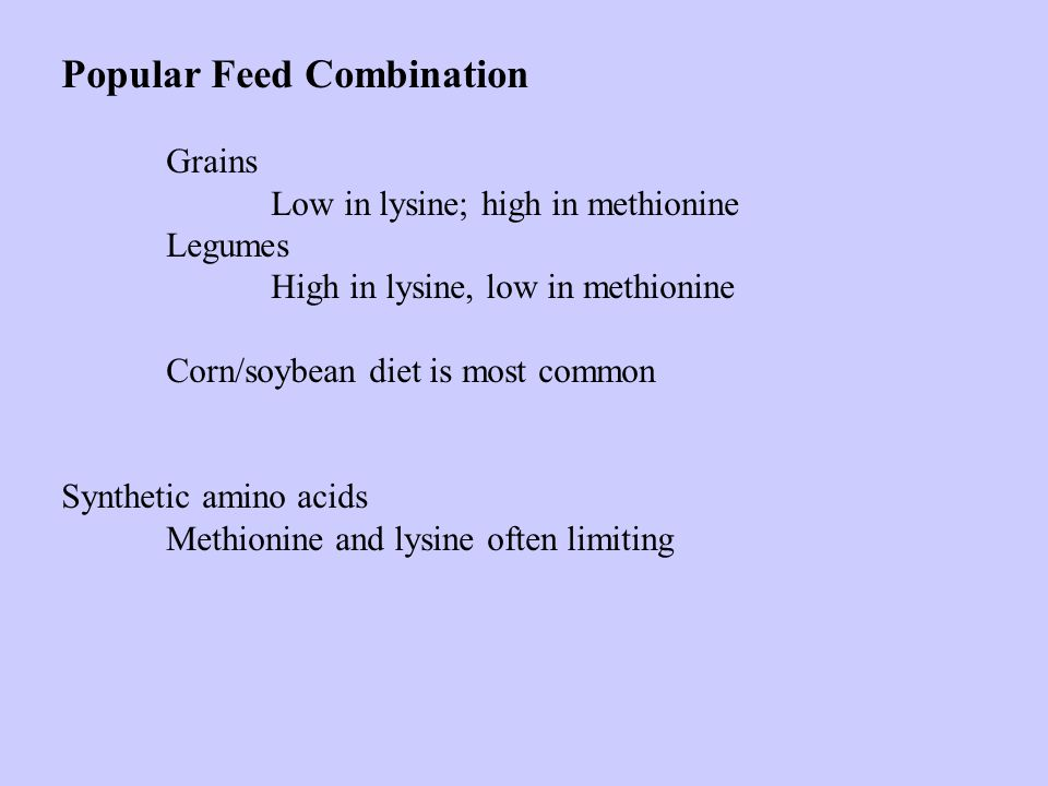 Popular Feed Combination Grains Low in lysine; high in methionine Legumes High in lysine, low in methionine Corn/soybean diet is most common Synthetic
