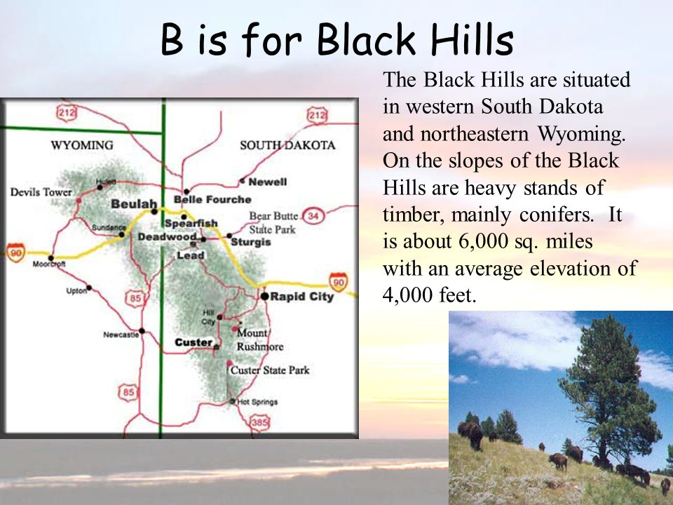 B is for Black Hills The Black Hills are situated in western South Dakota and northeastern Wyoming. On the slopes of the Black Hills are heavy stands
