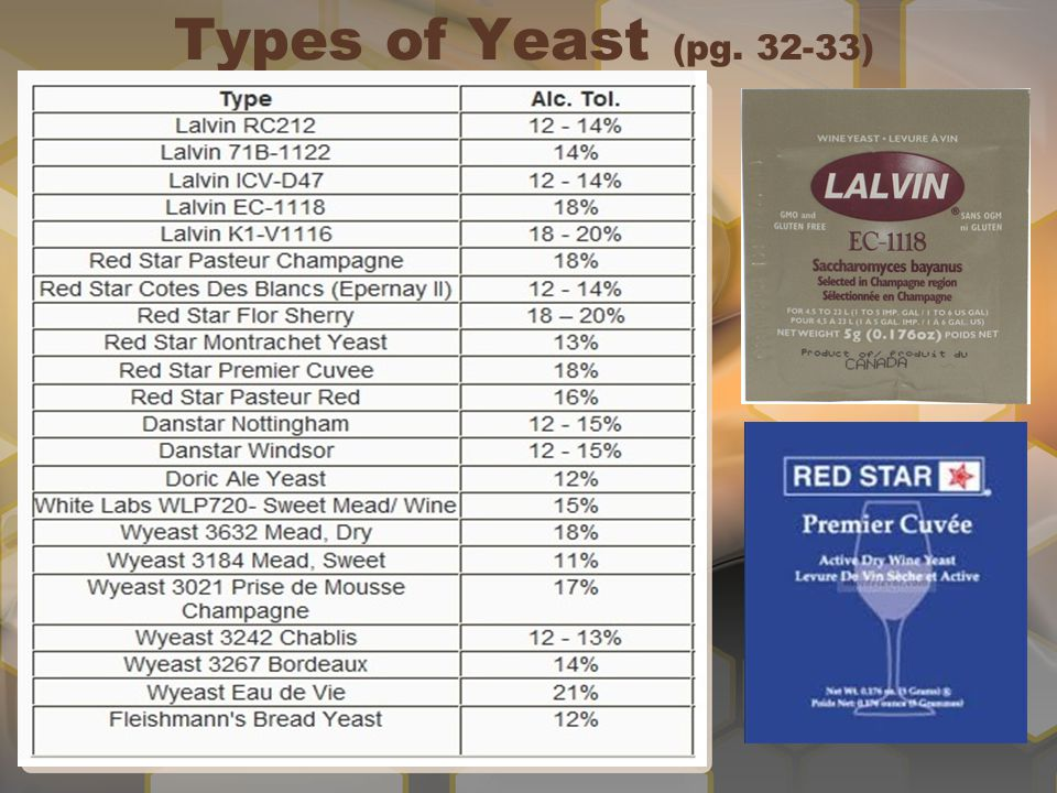 Types of Yeast (pg. 32-33)