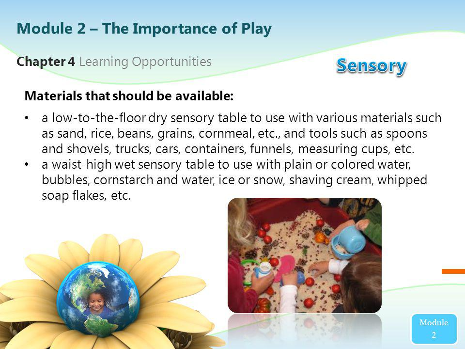 Module 2 Materials that should be available: a low-to-the-floor dry sensory table to use with various materials such as sand, rice, beans, grains, cor