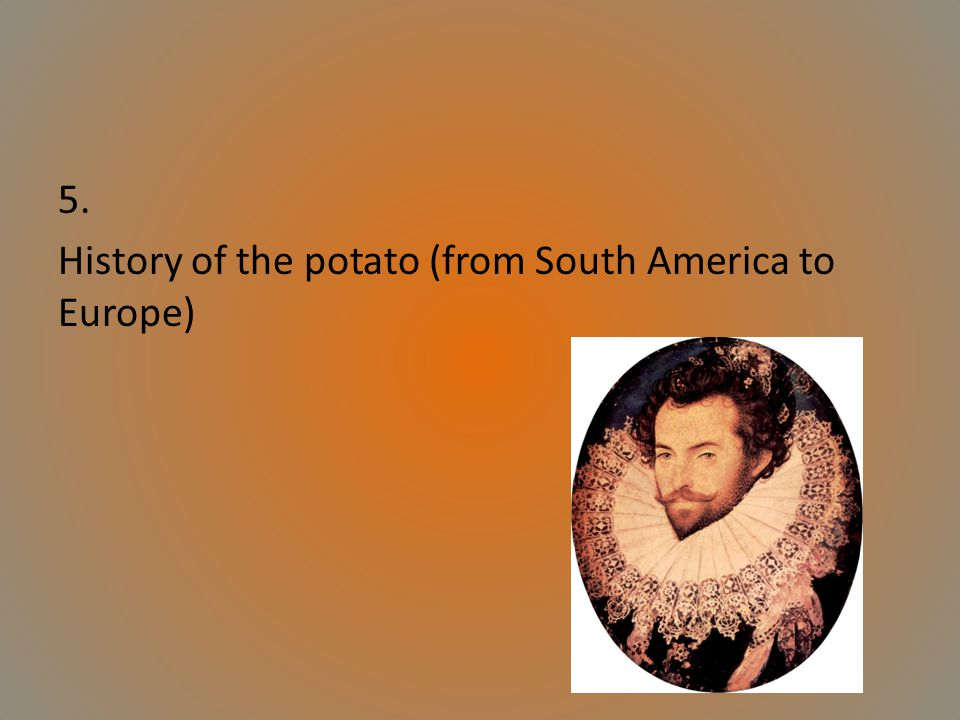 5. History of the potato (from South America to Europe)