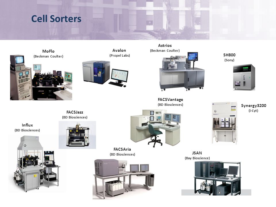 Cell Sorters MoFlo (Beckman Coulter) Avalon (Propel Labs) FACSJazz (BD Biosciences) Influx (BD Biosciences) FACSAria (BD Biosciences) FACSVantage (BD Biosciences) JSAN (Bay Bioscience) SH800 (Sony) Synergy3200 (i-Cyt) Astrios (Beckman Coulter)