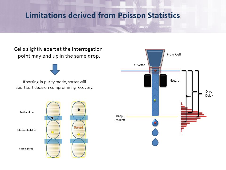 Limitations derived from Poisson Statistics Cells slightly apart at the interrogation point may end up in the same drop.